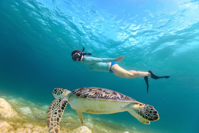 snorkeling photos
