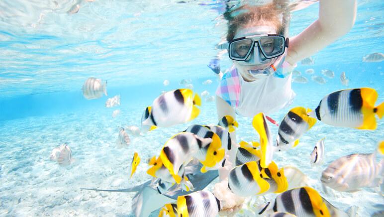 snorkeling 12
